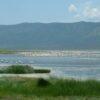 Lake-Baringo2