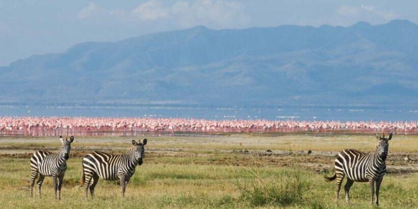Lake-Manyara2
