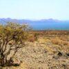 Lake_turkana