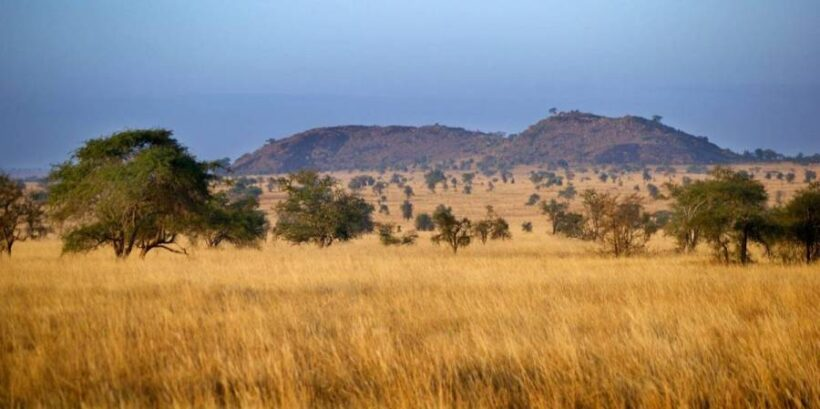 Tsavo-West-Safari