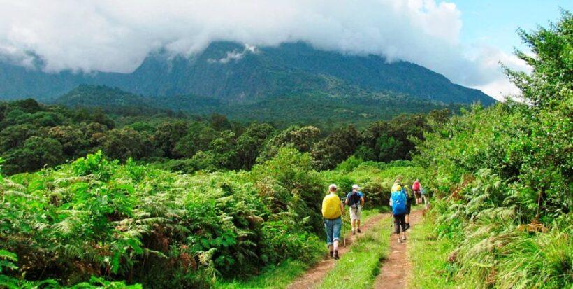 Mt Meru-Trekking
